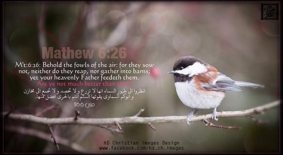 Matthew 6:26     Look at the birds of the air; they do not sow or reap or store away in barns, and yet your heavenly Father feeds them. Are you not much more valuable than they?  متي 6:26   انظُرُوا طُيُورَ السَّماءِ، فَهِيَ لا تَبْذُرُ وَلا تَحصُدُ، وَلا تَجمَعُ القَمحَ فِي مَخازِنَ، وَأبُوكُمُ السَماويُّ يُطعِمُها.   ألَستُمْ أثْمَنَ عِنْدَ اللهِ مِنَ الطُّيورِ؟